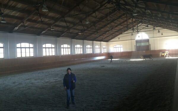 UVPS Equestrian Centre